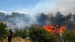 incendios forestales en rocha