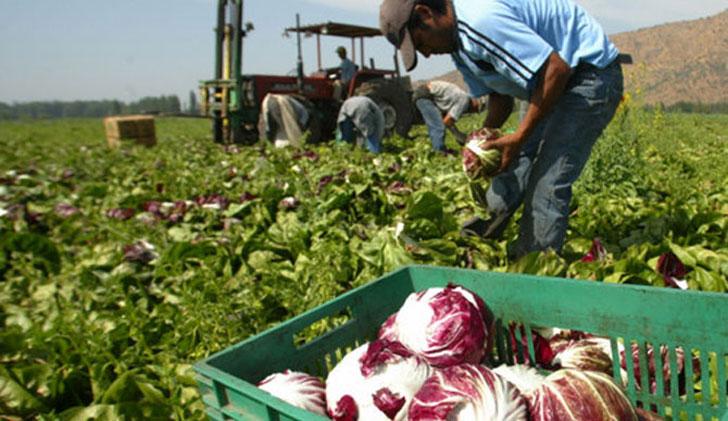 Productores Rurales en Chuy.
