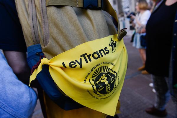 que dice la ley trans