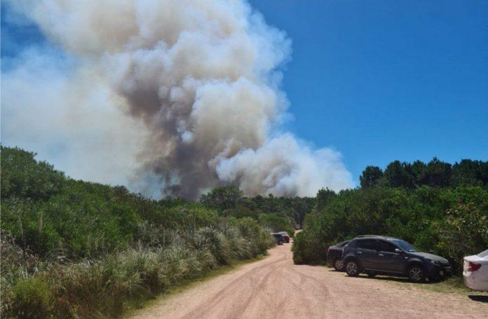 Incendio en Playa Grande